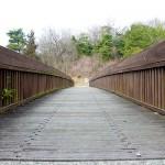 龍頭の森橋