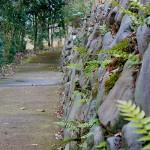 自然生態園